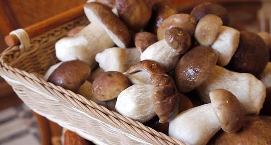Как солить белые грибы сухим способом?