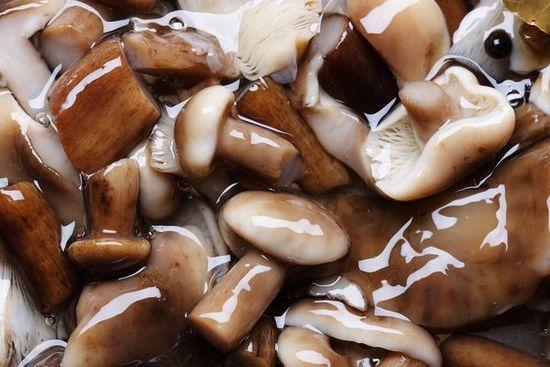 Как солить белые грибы: холодный засол
