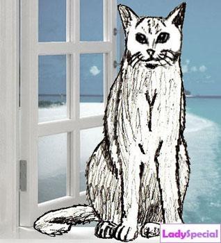Рисунок кота карандашом