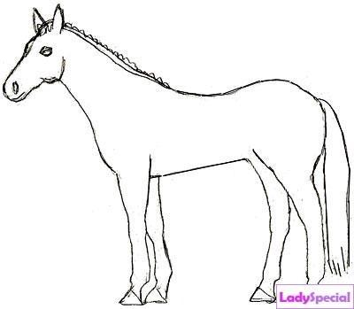 Пятый этап рисования лошади карандашом