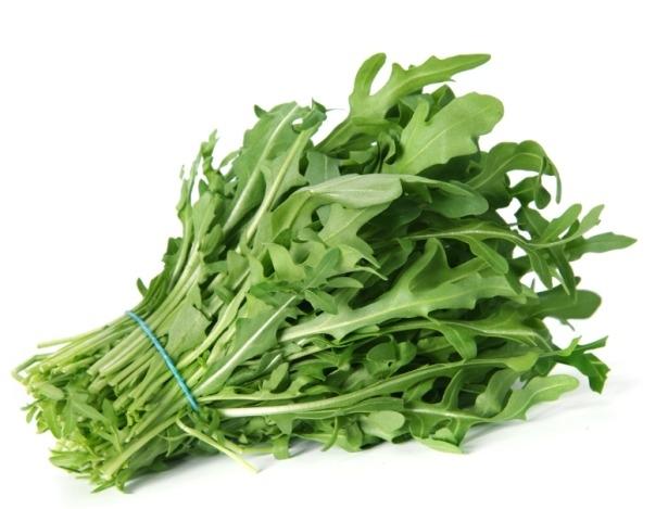 Салат рукола: выращивание