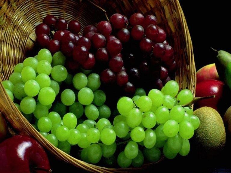 Поправляются ли от винограда?