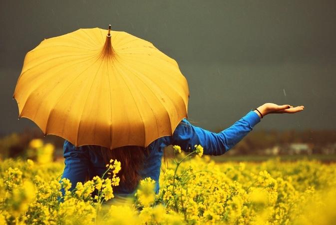 Желтый цвет цветов что означает