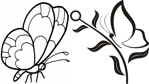 Бабочка в профиль рисуется