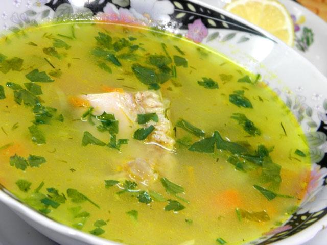 Рецепты супов из индюшки