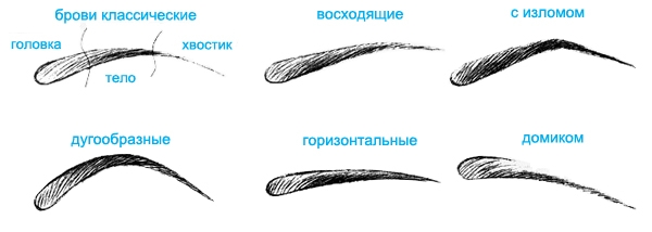 Как правильно рисовать брови