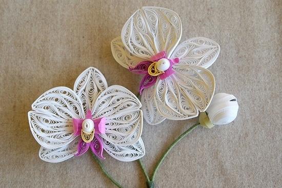 Орхидея квиллинг фото