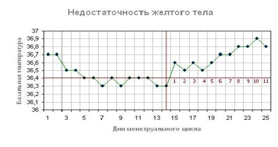 Как выглядит график базальной температуры при овуляции Измерение базальной температуры во время овуляции рекомендации