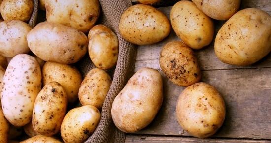 Мясо с картошкой в духовке – в горшочках и на противне. Как приготовить мясо по-французски, кабачки с мясом и картошкой?