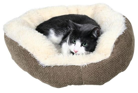 Мастерим лежанки для кошек и собак: мастер -классы и