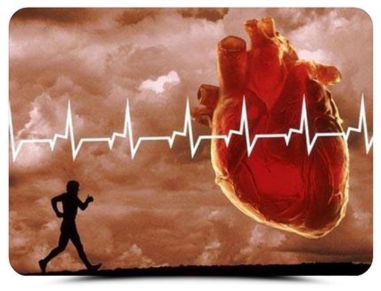 Чтобы сердце не напомнило о себе такой проблемой, как тахикардия, иногда достаточно подкорректировать образ жизни