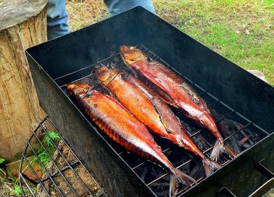 коптильни рыбу в Как готовить