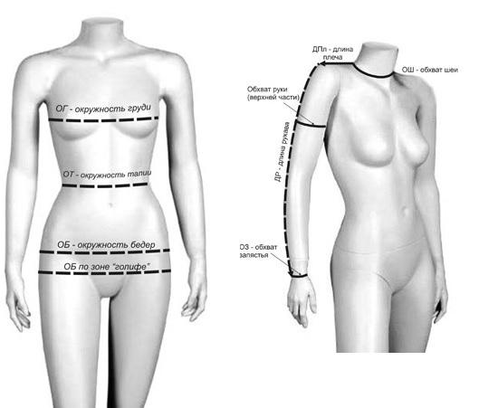 Снятие мерок обхвата груди