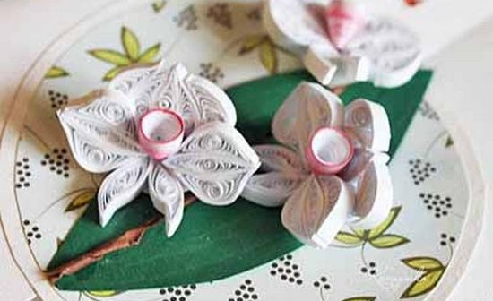 Орхидея квилинг