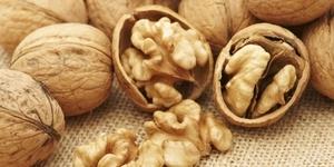 Перегородки грецких орехов лечебные свойства отзывы