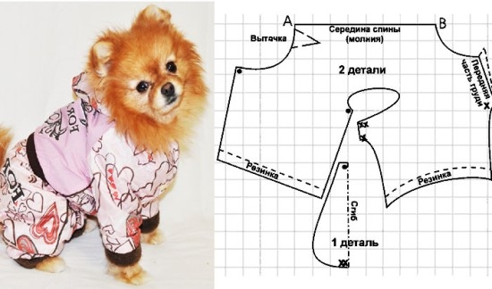 Выкройка одежды для собак