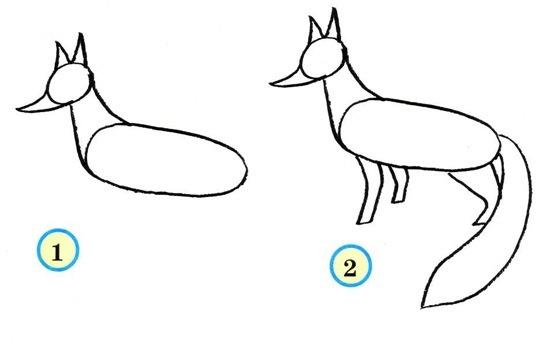 Как поэтапно нарисовать лису карандашом?