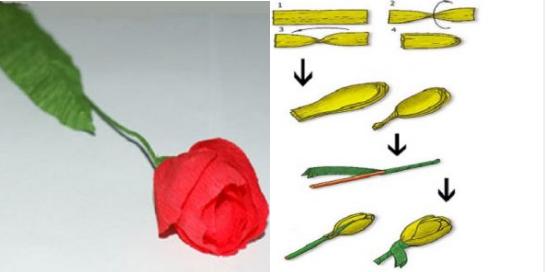 Тюльпаны и букеты из гофрированной бумаги