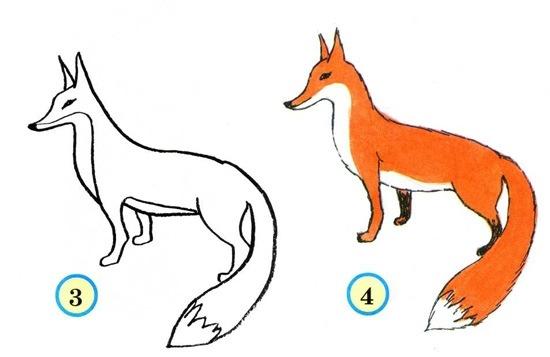Уроки рисования: как изобразить лису?
