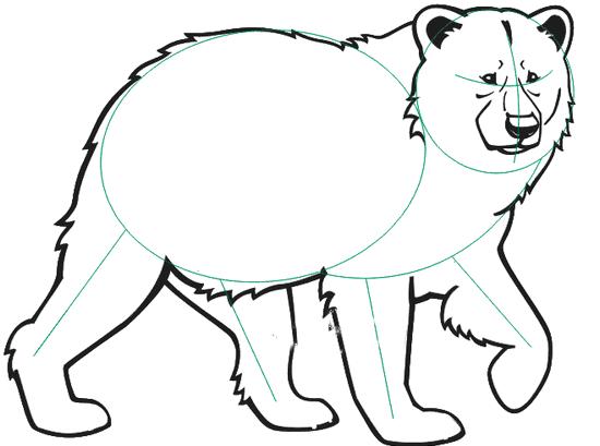 Обрисовываем базовые линии