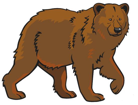 Как карандашом нарисовать бурого медведя