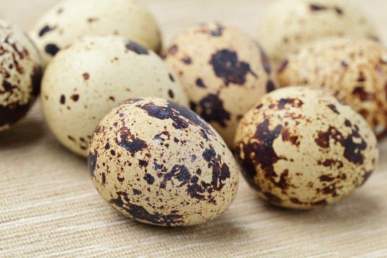 При заболевании употребляют перепелинные яиц
