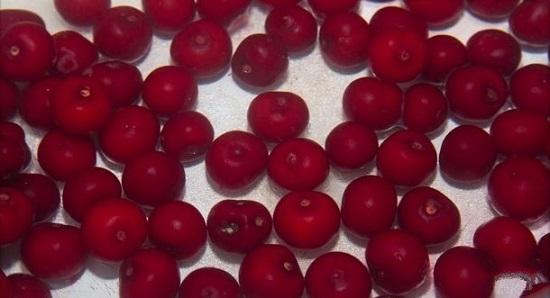 выкладываем вишневые плоды