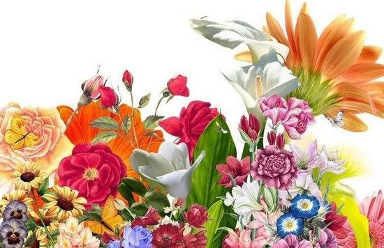 Как нарисовать букет цветов красиво?