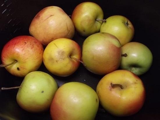 Как сделать яблоки слаще 633