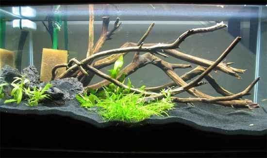 Как для аквариума сделать корягу для аквариума своими руками