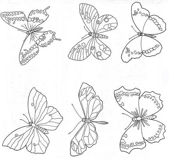 Бабочки картинки своими руками шаблоны фото 820