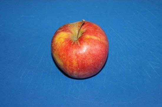 рецепт шарлотки с яблоком на сметане