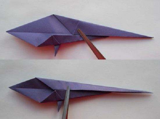 Хвост у попугая тонкий