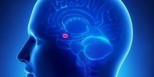 Питание при аденоме гипофиза
