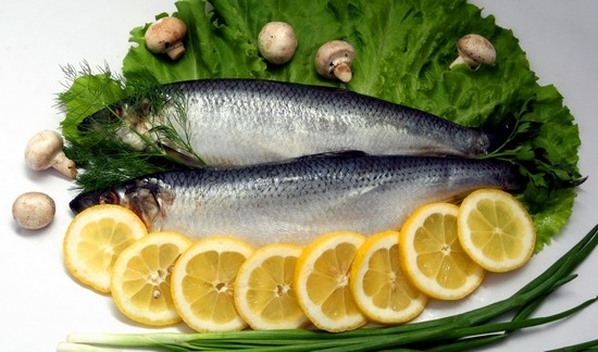 Рецепты для автоклава из рыбы толстолобика