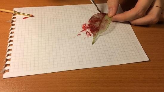 Скелетирование листьев: мастер-класс