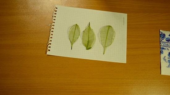Выкладываем просушенные листики на бумагу