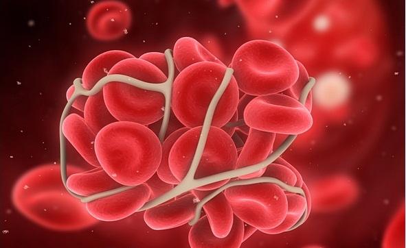 какие лекарства выводят паразитов из организма человека