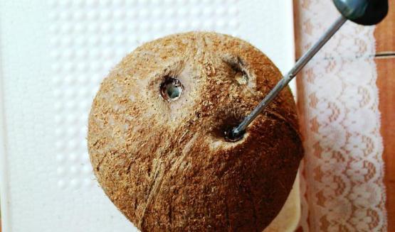 Muloqot.Uz - Как чистить кокос? Как расколоть и открыть кокос в домашних усл