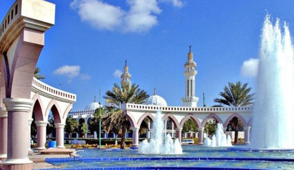 Объединенные арабские эмираты общая
